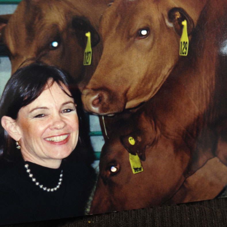 Beth with cattle