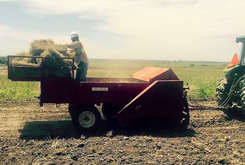 grass being harvested